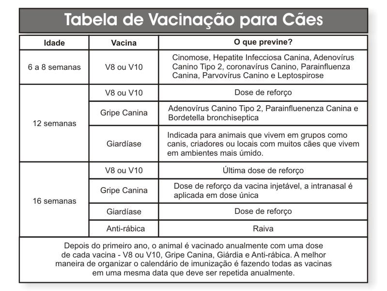 calendario-de-vacinacao-caes